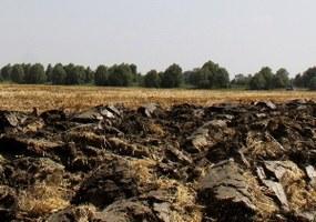 Console project, second survey questionnaire for farmers