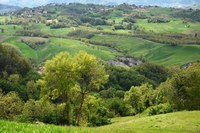 First survey questionnaire for farmers in Emilia-Romagna