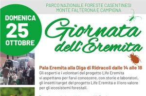 Day of the Eremita