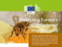 PROTECTING EUROPE'S THREATENED INVERTEBRATES
