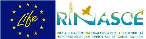 LIFE RINASCE Logo