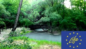 Cavata Orientale: EIA approved