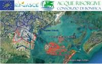"LIFE RINASCE meets the ""Acque Risorgive"""