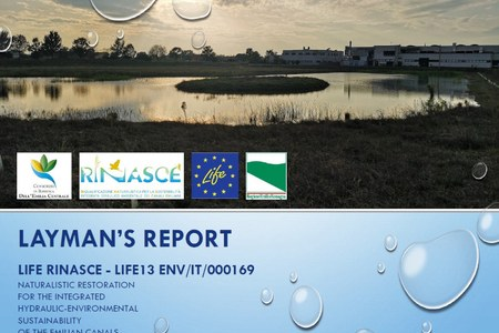 The Layman's report of the project is available online