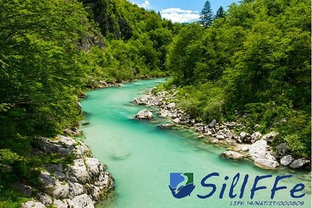 The LIFE RINASCE project will be presented in Slovenia