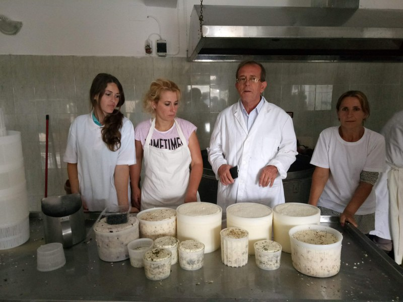 Cheesemaking courses to improve cheese quality