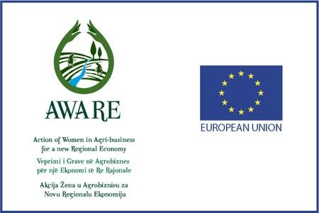 Progetto europeo Kosovo