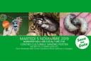 Save the date martedì 5 e sabato 9 novembre