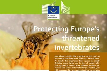 Protezione degli invertebrati minacciati in Europa