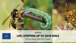 """WEBINAR """"LIFE: Stepping up to save bugs"""""""