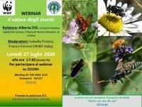 """WEBINAR """"Il valore degli insetti"""""""