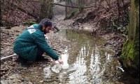 Monitoraggi ambientali: consultabili le relazioni tecniche