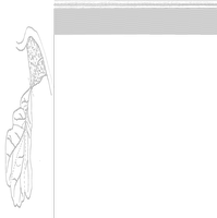 Figura 3. Schematizzazione di bacino idrografico tipo, con sottobacini, conoide e collettore.