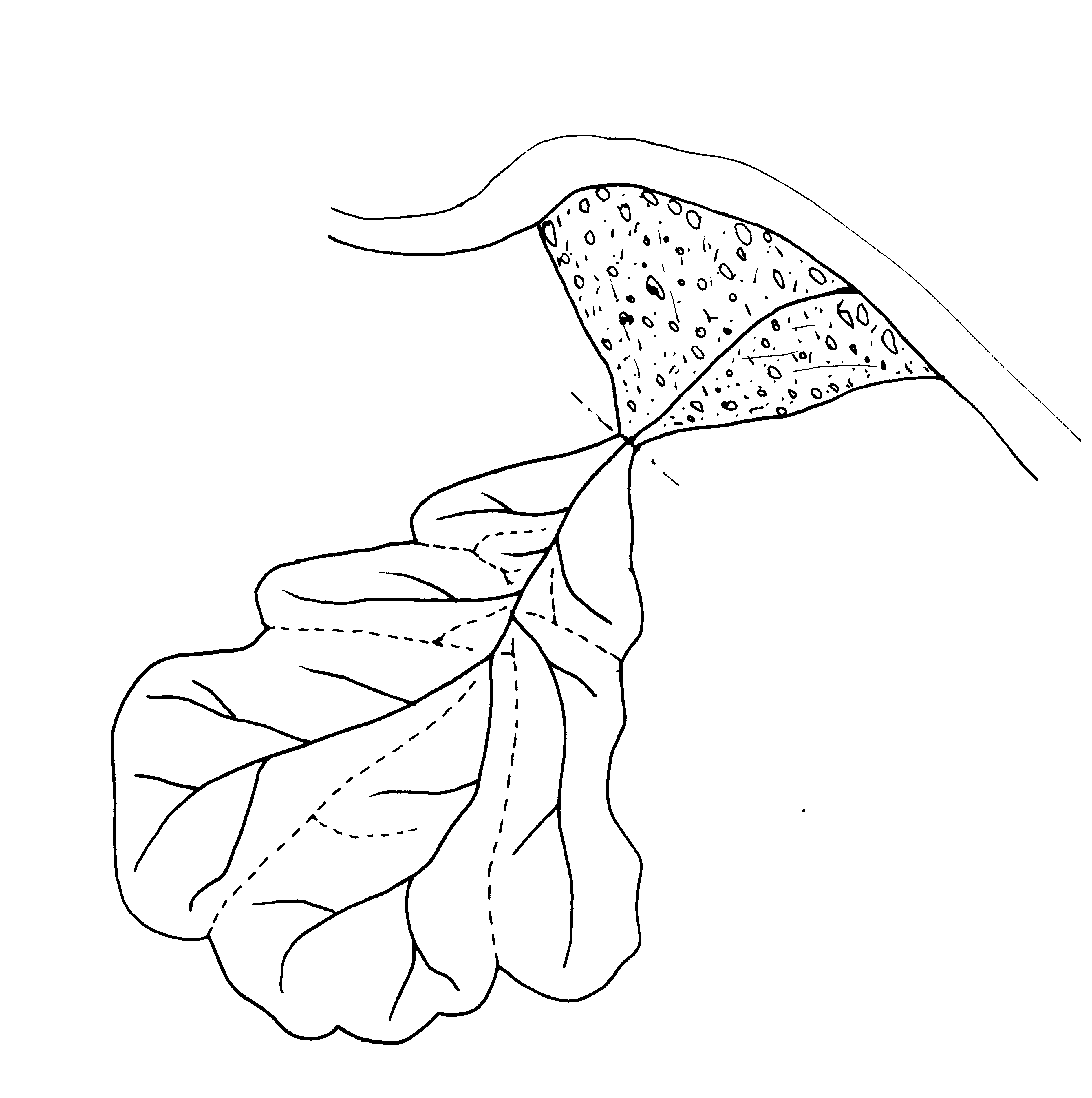 Figura 3. Schema bacino idrografico