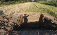 Disponibili i risultati delle verifiche archeologiche preventive