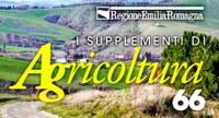 """La prevenzione del dissesto sul nuovo numero di """"Agricoltura"""""""