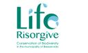 "Progetto LIFE14 NAT/IT/000938 ""Risorgive"""