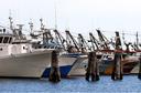 Un sostegno alle piccole flotte dell'Adriatico